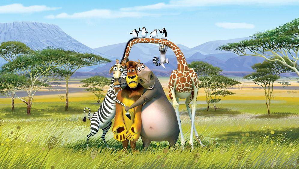 Madagascar 2 - Bildquelle: Foo