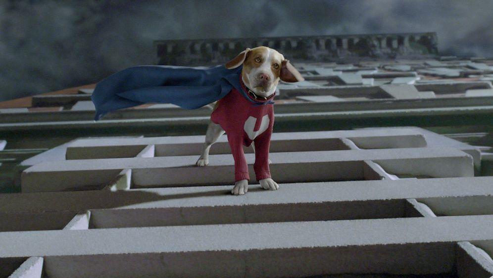 Underdog - Unbesiegt weil er fliegt - Bildquelle: Foo