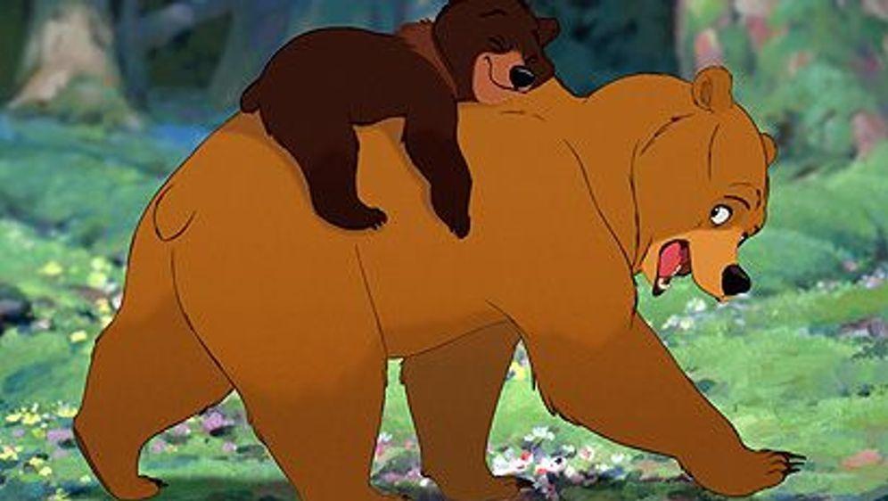 Bärenbrüder - Bildquelle: Foo