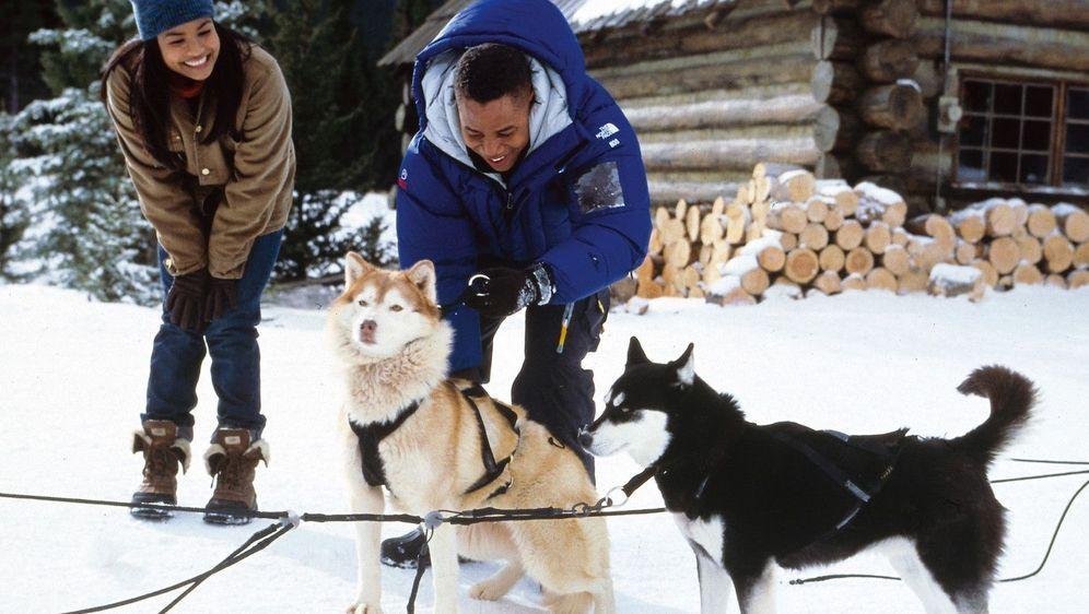 Snow Dogs - 8 Helden auf 4 Pfoten - Bildquelle: Foo