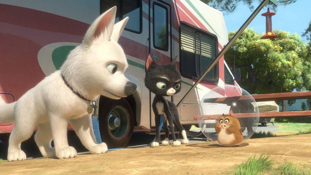Bolt - Ein Hund für alle Fälle - Bildquelle: Foo