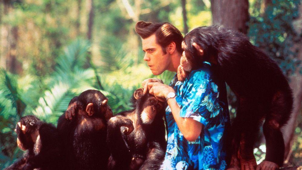 Ace Ventura - Jetzt wird's wild - Bildquelle: Foo