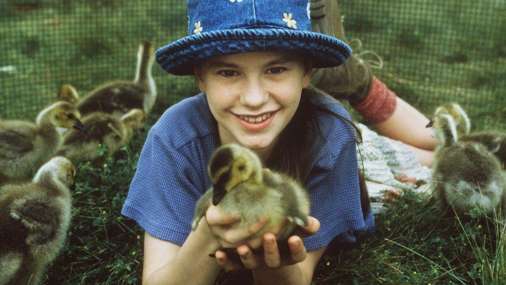Amy und die Wildgänse - Bildquelle: Foo