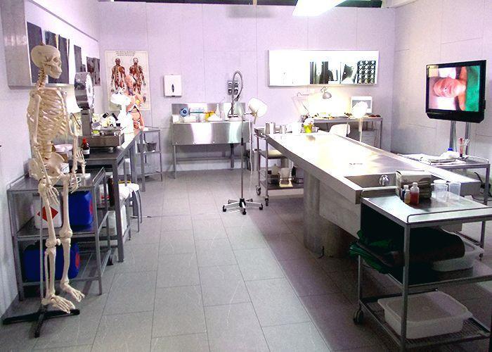 k11-130108-pathologie_SAT - Bildquelle: Constantin Entertainment GmbH/SAT.1