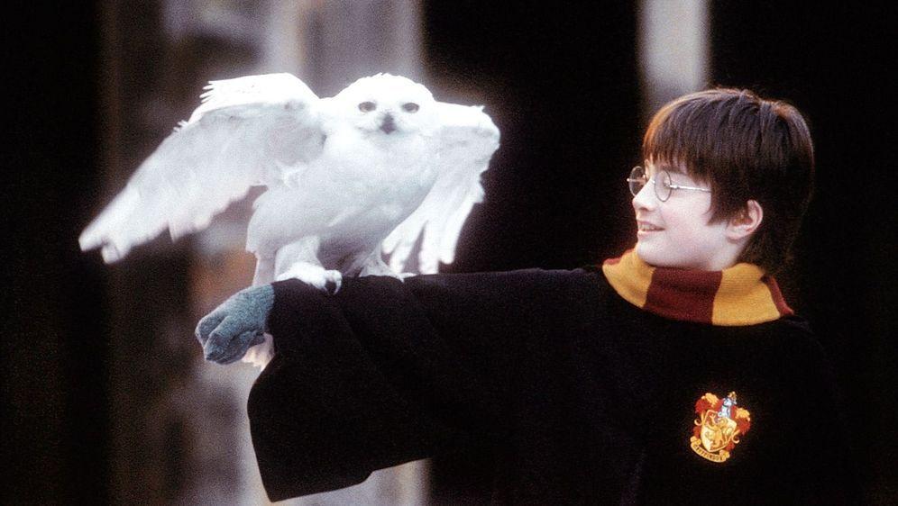 Harry Potter und der Stein der Weisen - Bildquelle: Foo