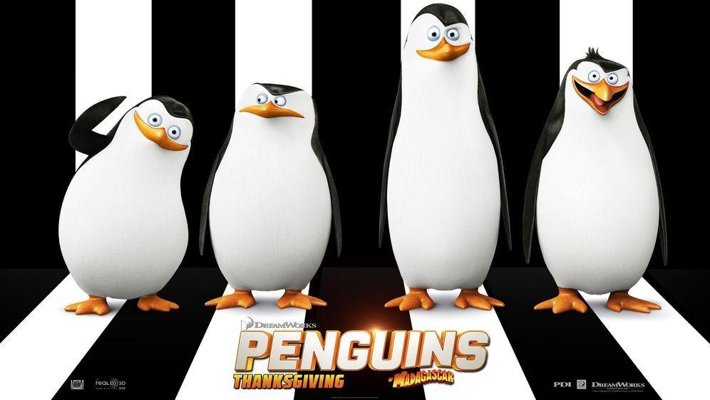 Die Pinguine aus Madagascar - Bildquelle: Foo