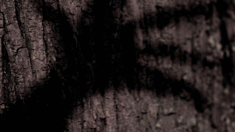 Wer hat Angst vorm schwarzen Mann? - Bildquelle: Foo