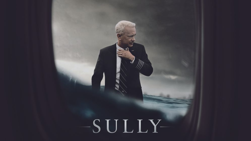 Sully - Bildquelle: Foo