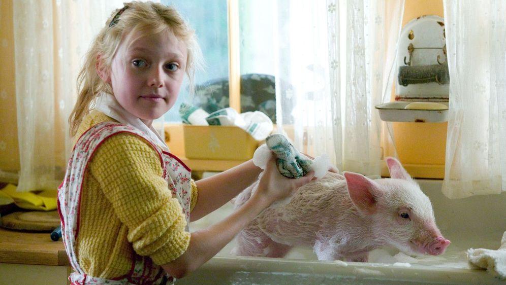 Schweinchen Wilbur und seine Freunde - Bildquelle: Foo