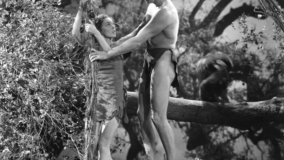 Tarzans Rache - Bildquelle: Foo